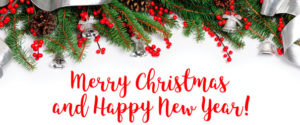 Merry Christmas from all of us at Reliance Auditing
